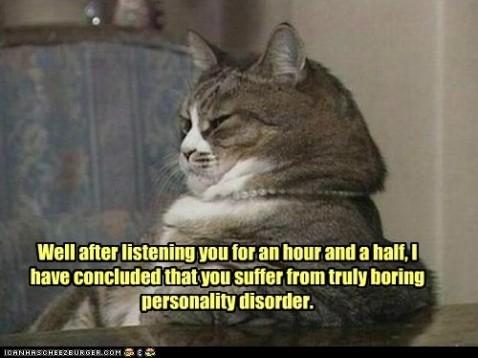 boring cat