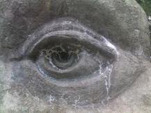 tears 2