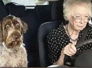 grandma driving